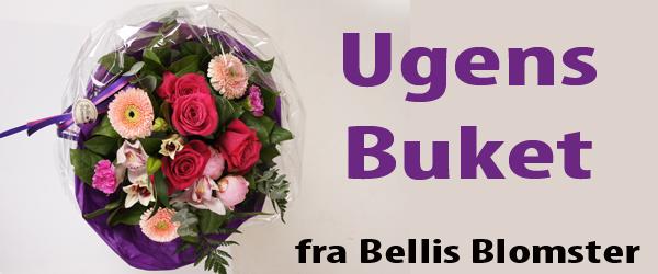 Ugens buket fra Bellis Blomster går til: