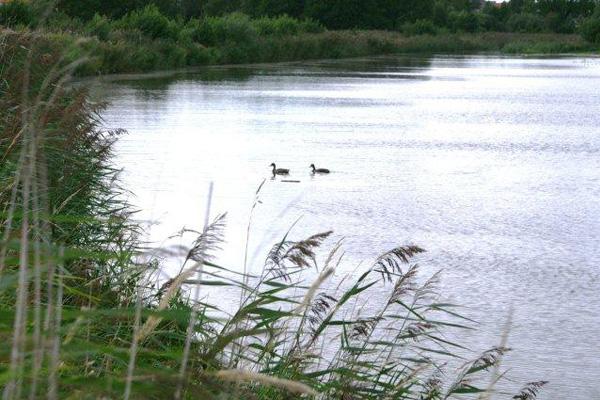 Ja til at etablere to søer mellem Voersaa og Asaa