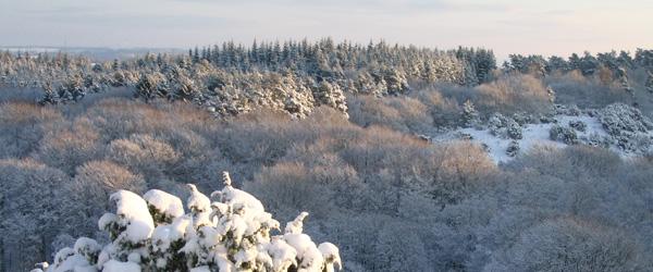 Når sne, is og frost er hverdagskost