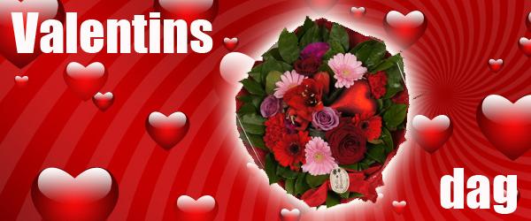 Bellis Blomster er klar til Valentins Dag