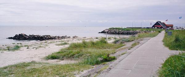 Skal marehalmen væk fra stranden i Sæby?