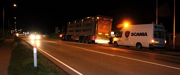 Grisetransport måtte ydes førstehjælp på Ålborgvej