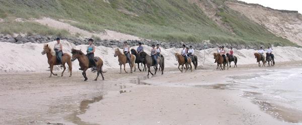 Bredt samarbejde om udvikling af rideturisme i Lysets Land