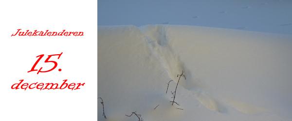 Julekalender 15. december: Sporet i sneen