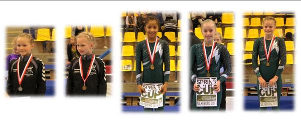 Springteam Sæby gymnaster fik medaljer