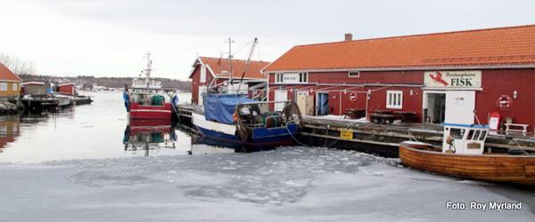 Udlejning: Vil noen flytte til Norge ?……..
