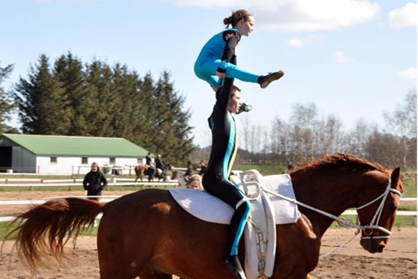 Hest Skaeve_600x400