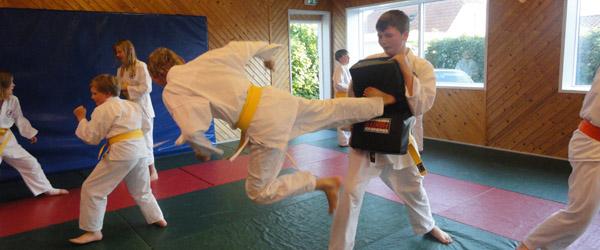 Sæby Karate Klub er også for voksne