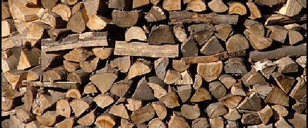 Kommunen sælger træ og brænde