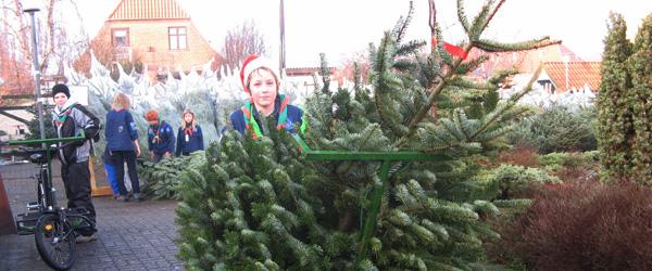 Spejdernes juletræssalg starter snart!