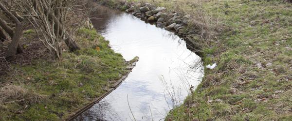 Nyt vandløb ved Strandager-udstykning i Sæby