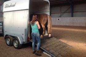 Rideskole hestetrailer