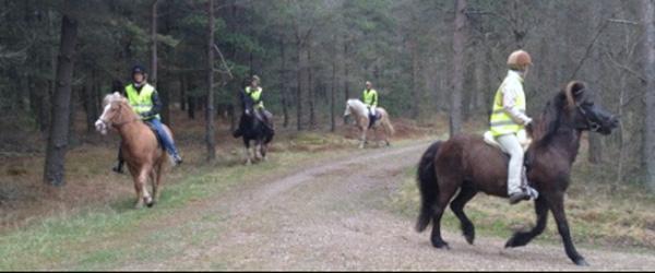 Hyggelig ridetur ved Voerså – vil du med?