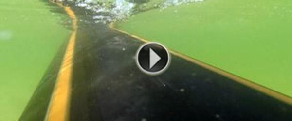 Hvad er det der flyder i vandet ved Lyngså?