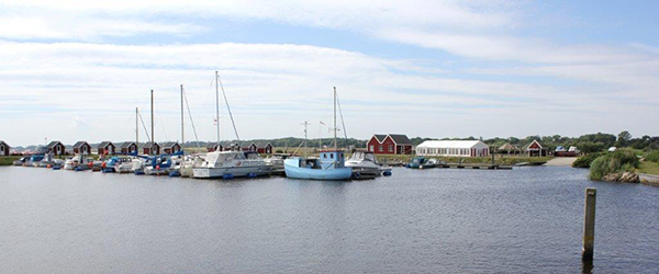 Voerså, Lyngså og Præstbro indgår i pilotprojekt