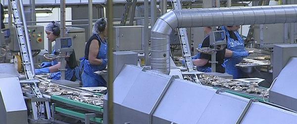 Nye arbejdspladser på vej til Sæby