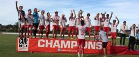 Understed Cup No 1 - Vinde copy