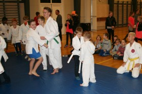 sf judo2