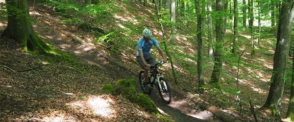 200 MTB cykelister i Sæbygård skov på søndag