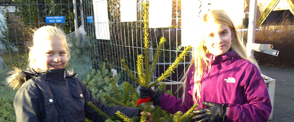 Spejderne sælger traditionen tro juletræer ved SuperBrugsen