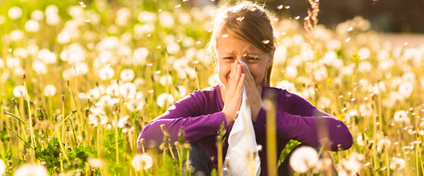 Ny app gør allergi overskuelig for knap 1 million danskere