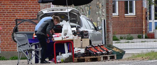 Initiativet blomstrer så småt<br> ved Business Park Sæby Syd