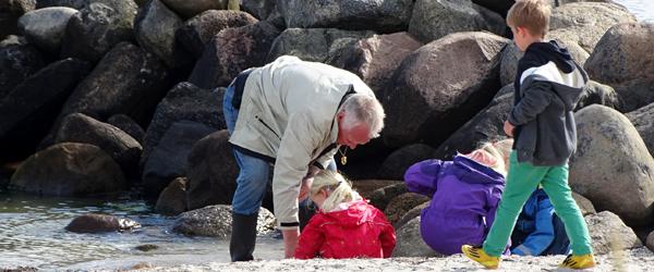 På jagt efter rav i Sæby<br> med onkel Frants
