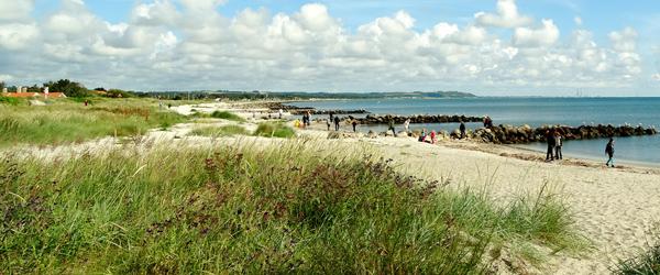 Motion i Sæby: Beachwalk<br> og hjertestyrkende motion
