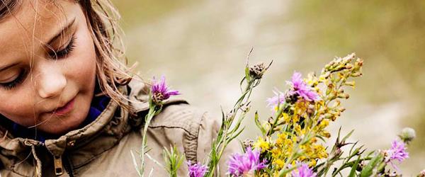 Kom og oplev Naturens Dag i Professorens Plantage
