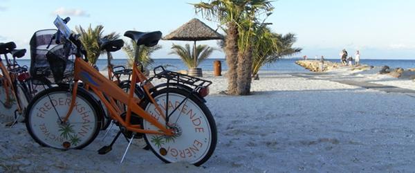 Frederikshavns bycykler er kendte og populære