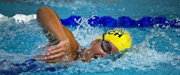 Steffens Blog: Det er bare en<br> overgang – lær at svømme!