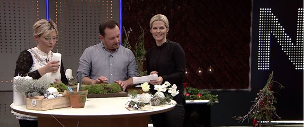 TV2 Nord er et stort hit<br> viser nye seertal fra Gallup