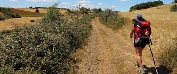 Gå med en tur i Sæby på<br> den portugisiske Camino