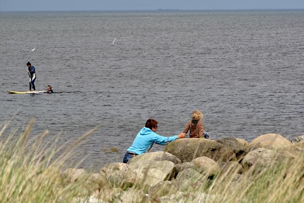 saebyhavn strandliv_600x400