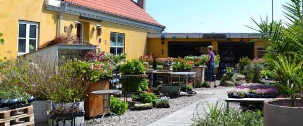 Ophørsudsalg i Butik L.L. i Mølholt