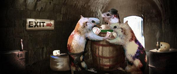 rat-1981295_1920