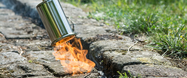 Weed control with fire