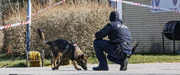 Nedsat straf til gerningsmand fra Hørby