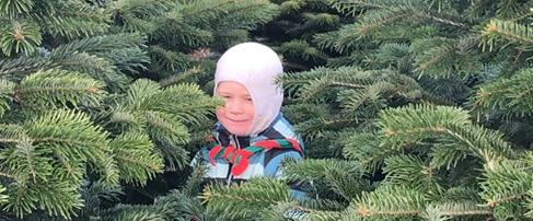 DDS Sæbygaard gruppens spejdere sælger juletræer